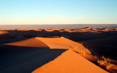 Erindringen fra Algeriet